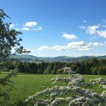 Croftjane view in Summer