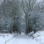 Croftjane in Winter 2